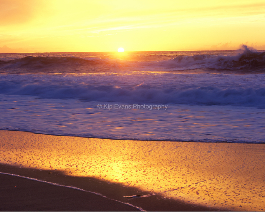 Sunset illuminates waves along the California coast.