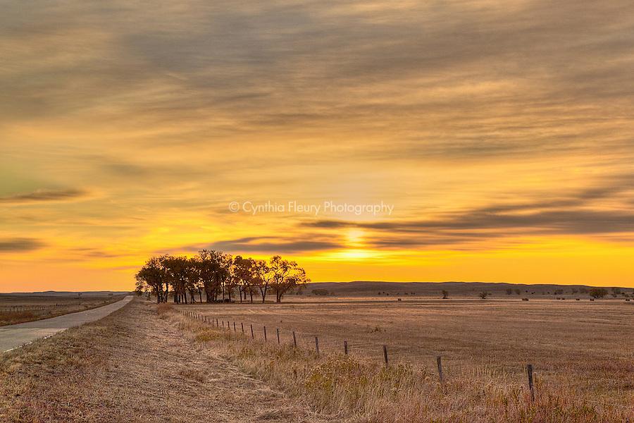 Road in Golden Sunset Nebraska