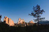 Rock formation and pine tree, Garden of The Gods National Landmark, Colorado Springs, Colorado, USA