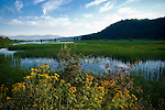 Idaho,Lake Pend Oreille. The Green Monarch Mountains rise over 5000 ft in the distance, with the marshlands of the Pack River Delta Wildlife Management area.