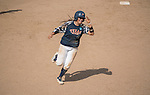 30 MAY 2016: Vanessa Carrizales (15) University of Texas-Tyler trots the bases after hitting a home-run during the Division III Women's Softball Championship held at the James I Moyer Sports Complex in Salem, VA.  University of Texas-Tyler defeated Messiah College 7-0 for the national title.  Don Petersen/NCAA Photos