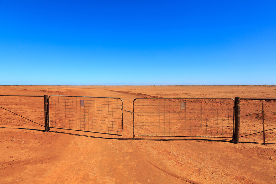 A dry dusty paddock on a sheep station. Western Australia.