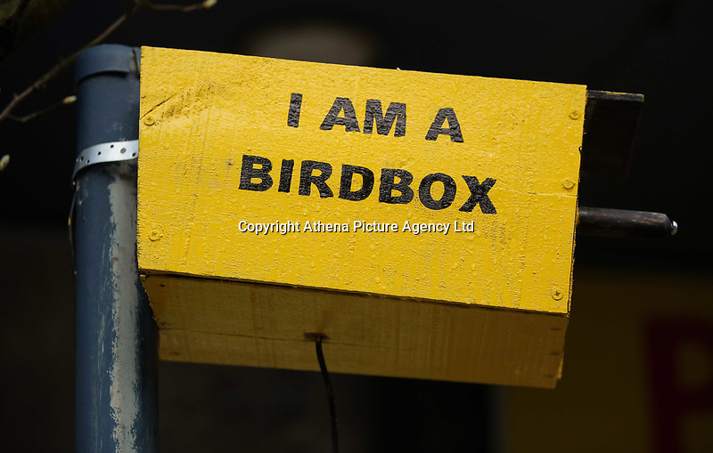 COPY BY TOM BEDFORD<br />Pictured: A yellow birdbox that resembles a speed camera has been installed by an unknown artist in High Street, Swansea, Wales, UK. Tuesday 04 April 2017<br />Re: Drivers heading to Swansea are getting into a flap over what some believe is a new speed camera.<br />But the yellow box on the busy city centre street is actually what is believed to be a small art installation.<br />You would be forgiven for thinking differently as it appears so similar to the familiar yellow speed cameras.<br />The artist responsible has yet to come forward.