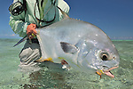 ______ FISH CAUGHT IN LOS ROQUES