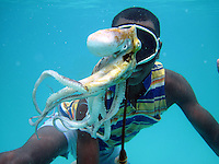 PEMBA, TANZANIA - DECEMBER 7 : Hamissi Usi, age 15, swims with an octopus on December 7, 2010 on Pemba, Tanzania. He works as a fisherman. He doesn't go to school but lives with his parents and siblings in the small village of Tumbe. (Photo by: Per-Anders Pettersson)