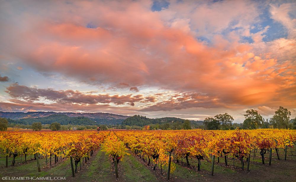 UpValley Sunset