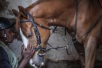 Work rider John Kuria shared a quiet moment with Nutcracker before morning exercises ayt Ngong Racecourse in Nairobi, Kenya. March 13, 2013. Photo: Brendan Bannon