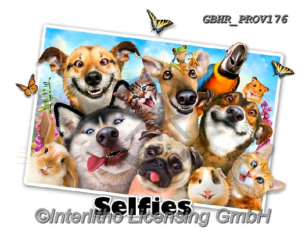 Howard, SELFIES, paintings+++++Pet Selfie,GBHRPROV176,#Selfies#, EVERYDAY