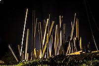 Brumadinho_MG, Brasil...Processo de montagem da nova escultura realizada pelo artista norte americano Chris Burden, no Centro de Arte Contemporanea Inhotim (CACI)...The construction process of the new sculpture made by North American artist Chris Burden, in the Contemporary Art Center Inhotim (CACI)...Foto: BRUNO MAGALHAES / NITRO