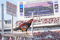 Game Day: MSU Football versus South Carolina.<br /> Opposite team's animal<br />  (photo by Robert Lewis / &copy; Mississippi State University)
