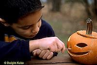 HS24-316z  Pumpkin - boy carving jack-o-lantern