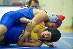 2013 wrestling: Los Altos High School