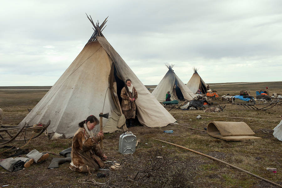 Bovanenkovo ,Yamal Peninsula, Russia, 09/07/2010..The Nenets, indigenous nomadic reindeer herders, at their overnight camp before heading north on sledges to the Russian Arctic coast.
