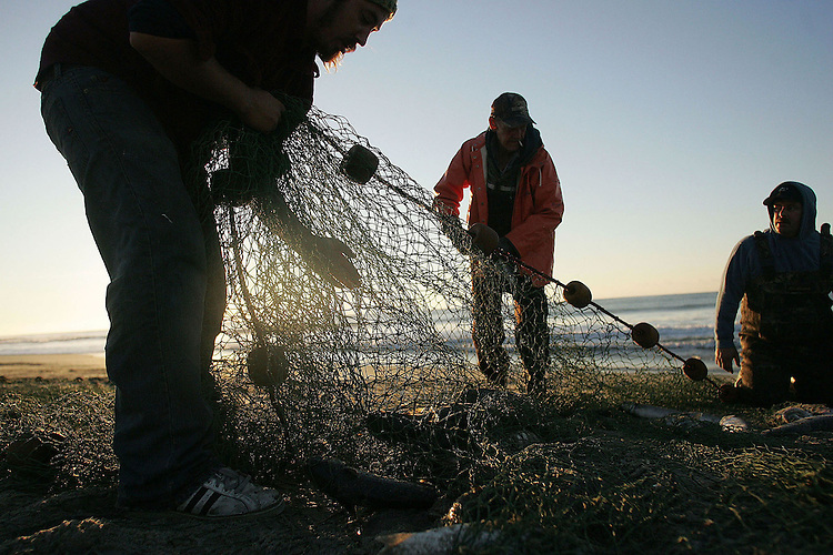 Chuck Beckley       Pulling the net checking for mullet fish.
