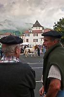 Europe/France/Aquitaine/64/Pyrénées-Atlantiques/Pays-Basque/Sare: Lors du  Concours De Pottok [Non destiné à un usage publicitaire - Not intended for an advertising use]
