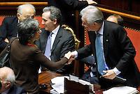 ANNA FINOCCHIARO E MARIO MONTI.Roma 22/12/2011 Senato. Voto di Fiducia sulla Manovra Economica.Votation at Senate about austerity plan. .Photo Samantha Zucchi Insidefoto