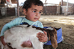 A Bedouin Palestinian boy plays with a goat outside his makeshift tent in the Ein al-Uja village, close to the West Bank city of Jericho, April 27, 2019. Israeli bulldozers had demolished the village in several times, but villagers said that they insist on remaining in their village. Photo by Ayat Arqawy