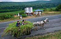 On the road to the village of Ciucurova, farmers enter the village on a cart loaded with hay. They greet in a neighborly manner the beekeepers who settle for three weeks every year by the side of the road. In Romania, the road network is old and the streets for going further into the countryside are better adapted to horse-drawn carts than motor vehicles.