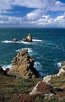 Europe/France/Bretagne/29/Finistère/Goulien: La réserve du Cap Sizun