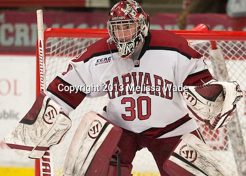 Raphael Girard (Harvard - 30) - The Harvard University Crimson defeated the Colgate University Raiders 4-1 (EN) on Friday, February 15, 2013, at the Bright Hockey Center in Cambridge, Massachusetts.