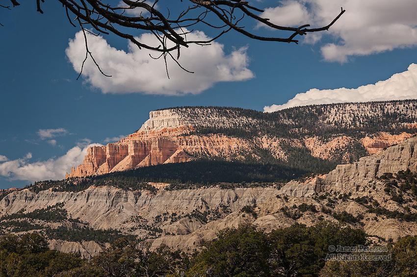 Southern Cliffs, Aquarius Plateau, Utah