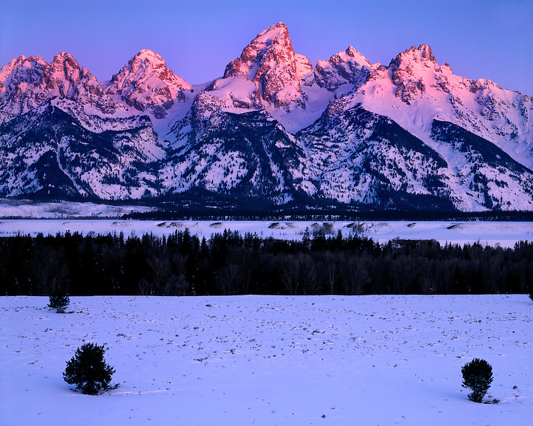 Sunrise glow on the Teton Range; Grand Teton National Park, WY