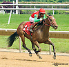 Gala's Bank winning at Delaware Park on 6/17/15
