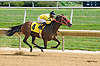 Ruby On My Mind winning at Delaware Park on 9/21/15