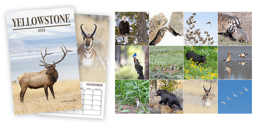 ***U.S. CHRISTMAS SHIPPING DEADLINE: December 14th (YOU MUST SELECT UPS 3 Day Shipping)***<br />