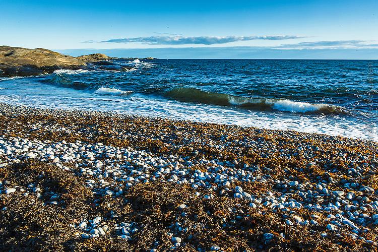 Havsvåg slår in på stranden på Torö i Stockholms skärgård. / Stockholms archipelago Sweden.