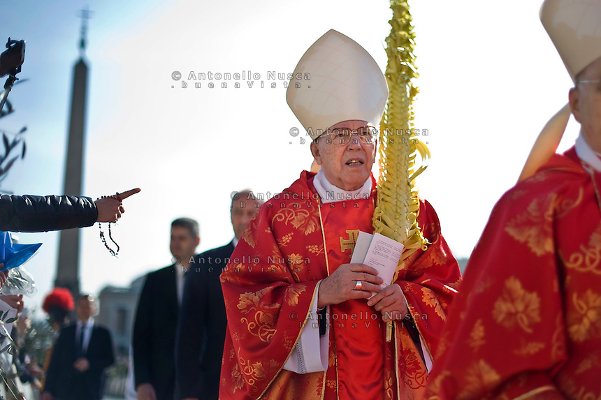 Rome, March 20, 2016. Il cardinale Giovanni battista Re durante la celebrazione della Domenica delle Palme in Piazza San Pietro. Cardinal  Giovanni Battista Re holds palm fronds as he walks in procession prior to Palm Sunday Mass celebrated by Pope Francis, in St. Peter's Square, at the Vatican.