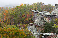63895-15703 Camel Rock in fall Garden of the Gods Shawnee National Forest Saline Co IL
