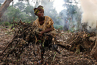 Bantu Woman Clearing Garden..Pygmies chop down the trees, but Bantu women do the clearing and maintenance of the gardens.  With more and more gardens and human stress, the Pygmies are helping to cut down their own forest...