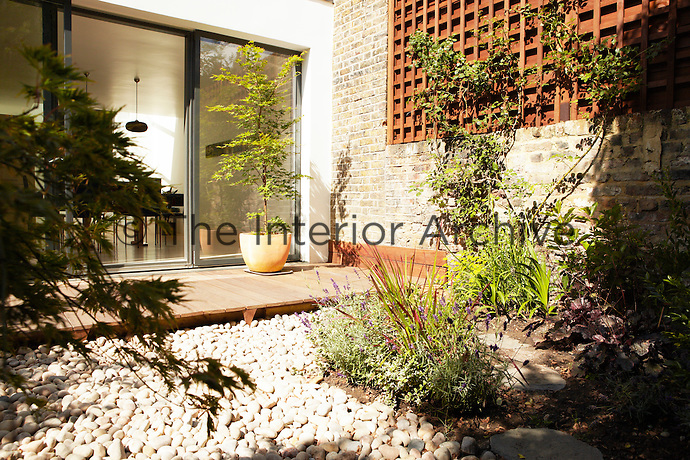 An Acer in a yellow painted pot stands on a decked patio area outside a sliding patio door in a modern town garden.