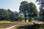 Valkenswaard  - hole 3 ,  Eindhovensche Golf Club.   COPYRIGHT KOEN SUYK