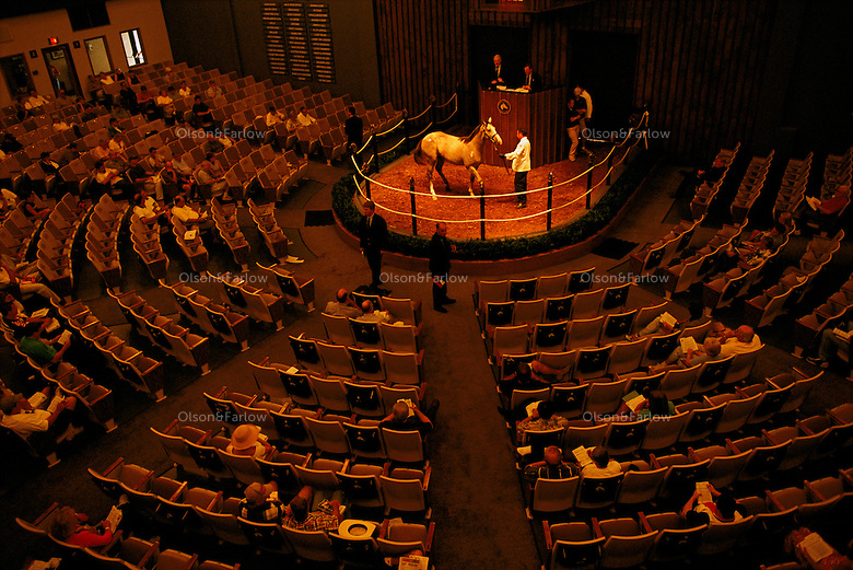The horses are most often sold at public auction like this two year old sale at Fastig-Tipton a a sale barn where Seattle Slew was once bought for $17,000 and went on to win the Kentucky Derby and Triple Crown.