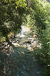 Bear Creek in the San Bernardino Mountains