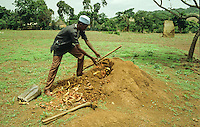 "Farmer of Fouta Djallon fills the hole made on the top of the termite-ant with ""Nete-teli""(fan of Parkia biglobosa and bark of Eritrina......."