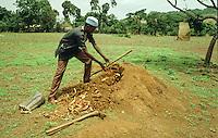"Farmer of Fouta Djallon fills the hole made on the top of the termite-ant with ""Nete-teli""(fan of Parkia biglobosa and bark of Eritrina......."
