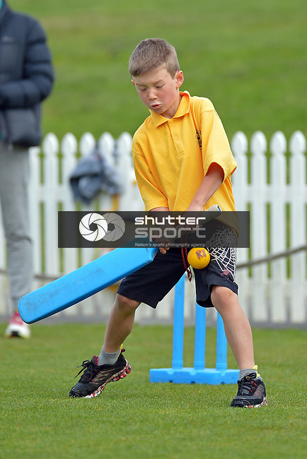 NELSON, NEW ZEALAND - NOVEMBER 5: Saturday Morning Kids Cricket, Saxton Oval, Nelson, New Zealand. Saturday 5 November 2016. (Photo by: Barry Whitnall Shuttersport Limited)