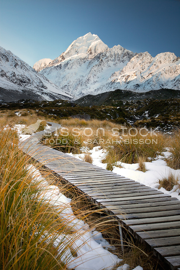 Mount cook viewed from the hooker valley boardwalk in winter with snow and tussocks.