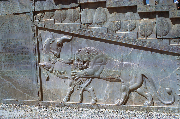 Bas-relief in Persepolis depicting a lion eating a bull. This iconography is typical of ancient iranians. <br /> Picture taken circa 1976 in Persepolis, Fars province, Iran.