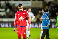 Lukasz Fabianski of Swansea looks dejected at final whistle of Barclays Premier League match between Swansea City and Sunderland played at the Liberty Stadium, Swansea  on  January the 13th 2016