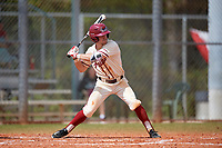 Saint Joseph's Hawks right fielder Jake Artz (8) bats during a game against the Ball State Cardinals on March 9, 2019 at North Charlotte Regional Park in Port Charlotte, Florida.  Ball State defeated Saint Joseph's 7-5.  (Mike Janes/Four Seam Images)