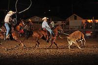 Saline County Fair 2013