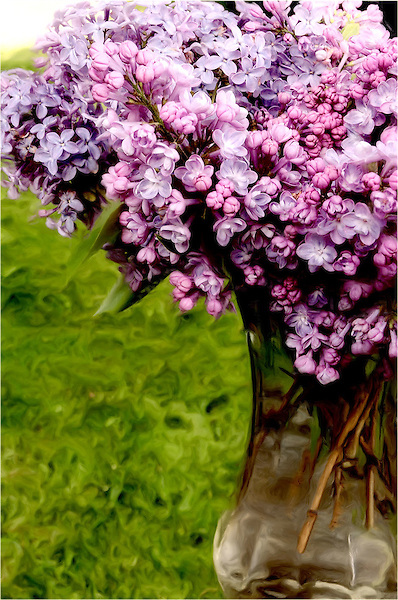 Lilac's in a summer vase