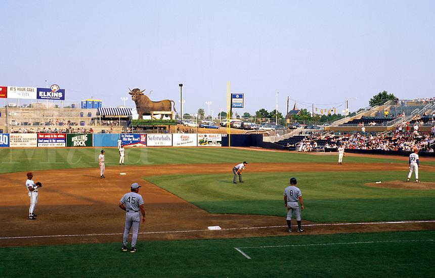 Duke University in Durham North Carolina USA, Bull Durham Stadium