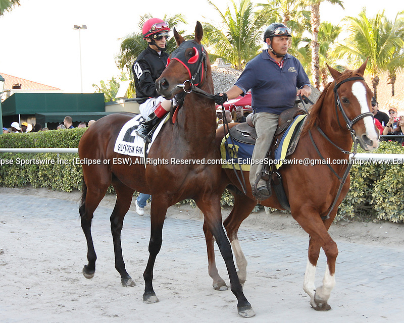 "Point of Entry (#2) with John Velazquez win the 30th running of the Kitten's Joy Gulfstream Turf Handicap (Grade 1) for 4-year olds & up, going 1 1/8 mile on the turf, at Gulfstream Park.  Trainer Claude ""Shug"" McGaughey III.  Owner Phipps Stable"