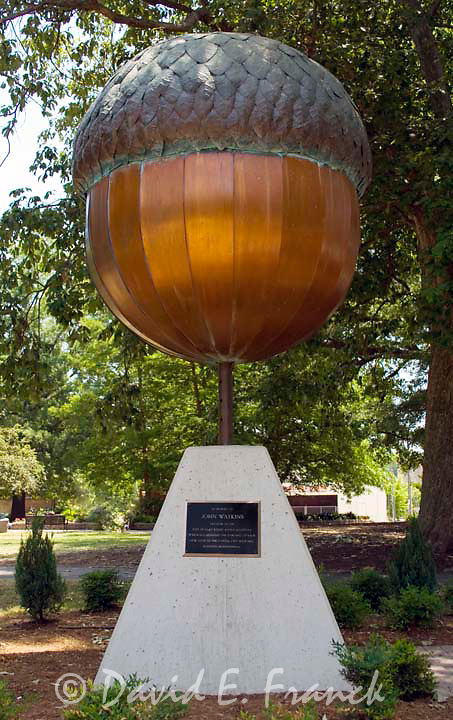 Big Acorn sculpture in a park in downtown Raleigh NC