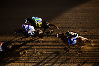 ARCADIA, CA - MARCH 11: Shaman Ghost #3, ridden by Javier Castellano gains position behind the leaders in the Santa Anita Handicap at Santa Anita Park on March 11, 2017 in Arcadia, California. (Photo by Alex Evers/Eclipse Sportswire/Getty Images)